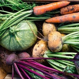 Produce, Vegetables and Herbs Category Image